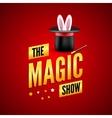 Magic poster design template Magician logo vector image vector image