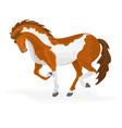 Piebald-horse vector image vector image