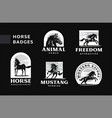 a set badges frisky horses vector image