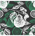 bergamot branch seamless pattern hand drawn fruit vector image