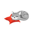 concept animal care shelter donations pretty vector image vector image