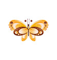 creative butterfly with brown and vector image vector image