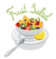 fresh fruits salad vector image vector image