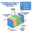 fuel cell diagram vector image vector image