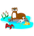 otter in lake vector image vector image