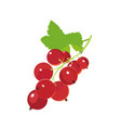 red currants icon berry in cartoon style vector image