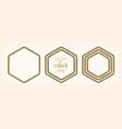 set abstract golden hexagonal frames vector image