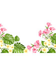 summer vacation card tropical flowers plumeria vector image vector image