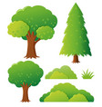 different types of tree vector image vector image