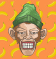 grinning monkey with skullcap fullcolor vector image
