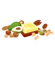 nuts and fruit seeds or bean food vegetarian vector image