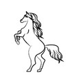 outline draw horse vector image vector image
