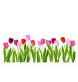 realistic isolated tulips flowers vector image vector image