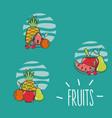 set of fruits cartoons vector image