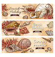 summer beach shells and sea corals vector image