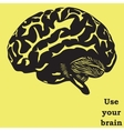 Use your brain vector image vector image