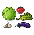 A set of drawn vegetables vector image