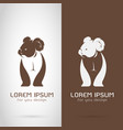bear koala design on white background and brown vector image