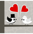birds love vector image