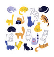 collection cute cats character in flat cartoon vector image vector image