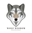 Cute grey wolf vector image vector image