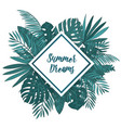 frame with tropical palm leaves green exotic vector image
