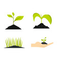 ground plant icon set flat style vector image