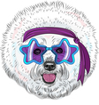 hipster Star Disco dog Bichon breed vector image vector image