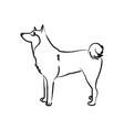 outline draw dog vector image vector image