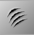 realistic torn grey paper four claws scratches vector image vector image