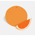 grapefruit isometric icon vector image vector image