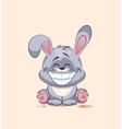 isolated Emoji character cartoon Gray leveret with vector image vector image