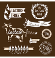 Lactose free elements vector image vector image