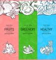 vegan healthy organic banner set with vector image