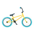 bmx bike flat vector image