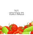 fresh vegetable vector image