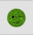 green grass circle field 3d face wink smile vector image