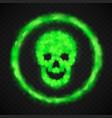 green smoke skull warning danger sign vector image
