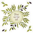 hand drawn olive branches vector image vector image