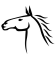 horse beauty vector image vector image