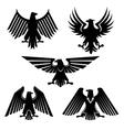 Set of hawk and eagle heraldic falcon icons vector image