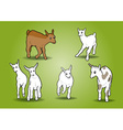 small goats on the white vector image vector image