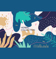 abstract herbal collection colorful banner vector image