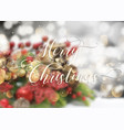 decorative christmas text on defocussed image vector image vector image