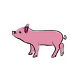 outline draw pig vector image vector image