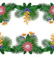 tropical double seamless border vector image vector image