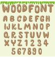 wood font light brown vector image