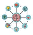 brain concept imagination mind processes vector image
