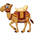 cartoon funny camel with saddlery vector image vector image