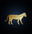 geometric lioness golden polygonal vector image vector image
